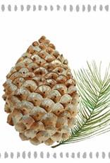 Paper Products Design Pine Cone Nature Lunch Serviette