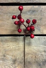 Tri W Imports Outdoor Berry Pick (Tri)