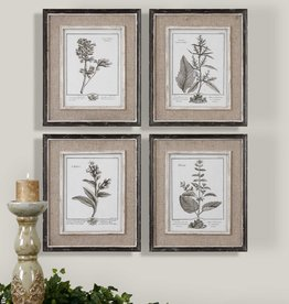 Uttermost Casual Grey Study Framed Prints