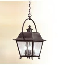 Troy Lighting Troy Lighting Bristol Hanging Lantern Pendant