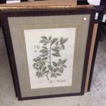 Paragon Vintage Foliage I