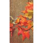 PPD Crimson Leaves, Guest