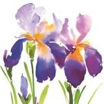 Purple Iris Lunch Serviette