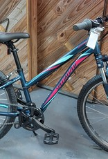"""Specialized Hot Rock (24"""")"""