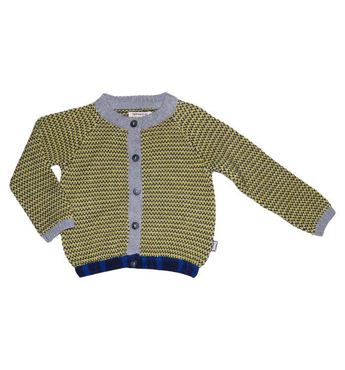 Imps & Elfs Boy's Cardigan, AH19