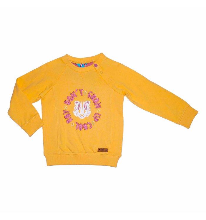Lief! Lief! Boy's Sweater, PE20