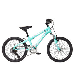 "Bianchi Junior Duel 20"" Girls 6sp"