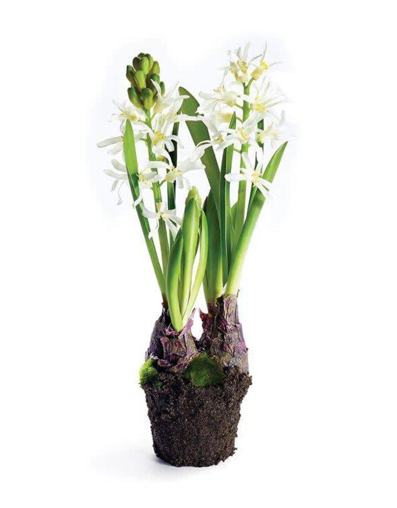 "Hyacinth Drop-In 13"" White"