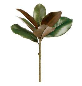 """Grand Magnolia Pick 16"""""""