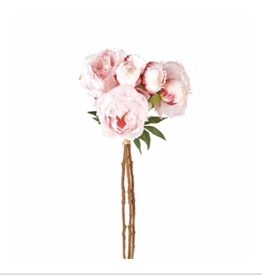 Peony Bundle/3 Light Pink