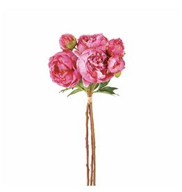 Peony Bundle/3 Pink