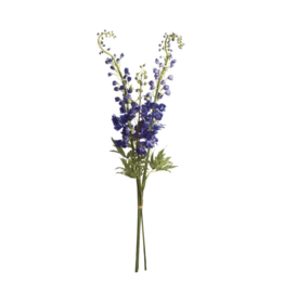 "DELPHINIUM 49"" STEMS BNDLE/3 PURPLE"