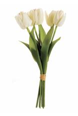 """Dutch Tulips 15"""", Bundle of 6"""