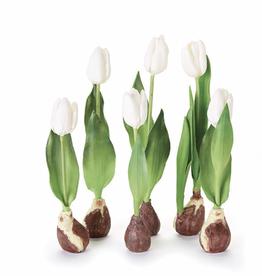 "Standing Tulip w/ Bulb 12 1/2"" Cream"