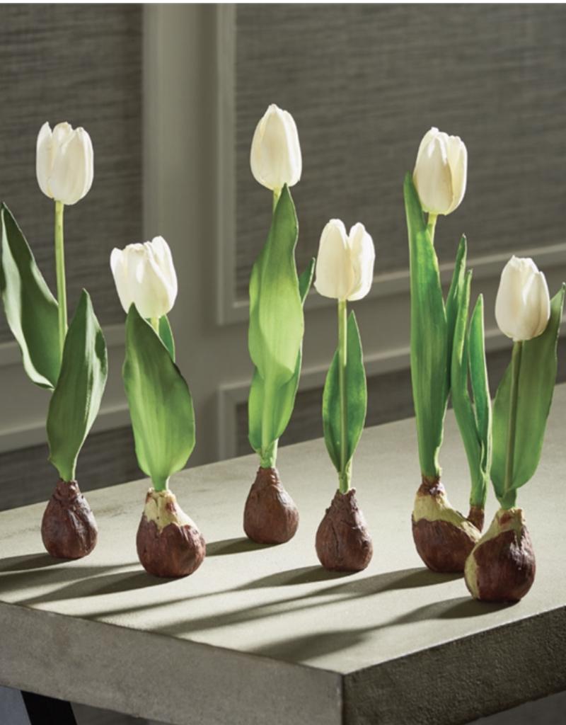"Standing Tulip w/ Bulb 9 1/2""  Cream"