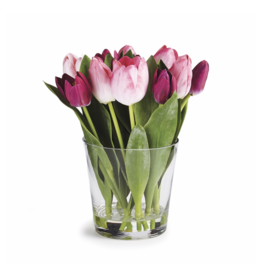 Dutch Tulip Arrangement in Vase 11""
