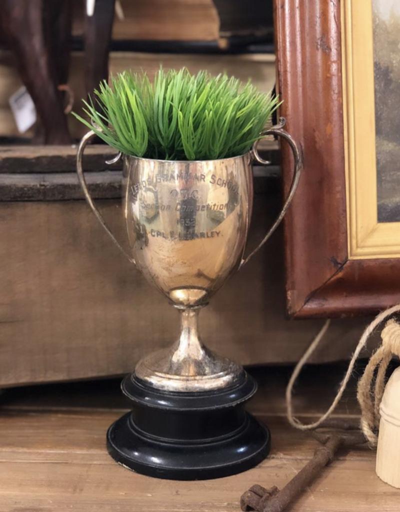 "Mini Potted Grass 3.5"""