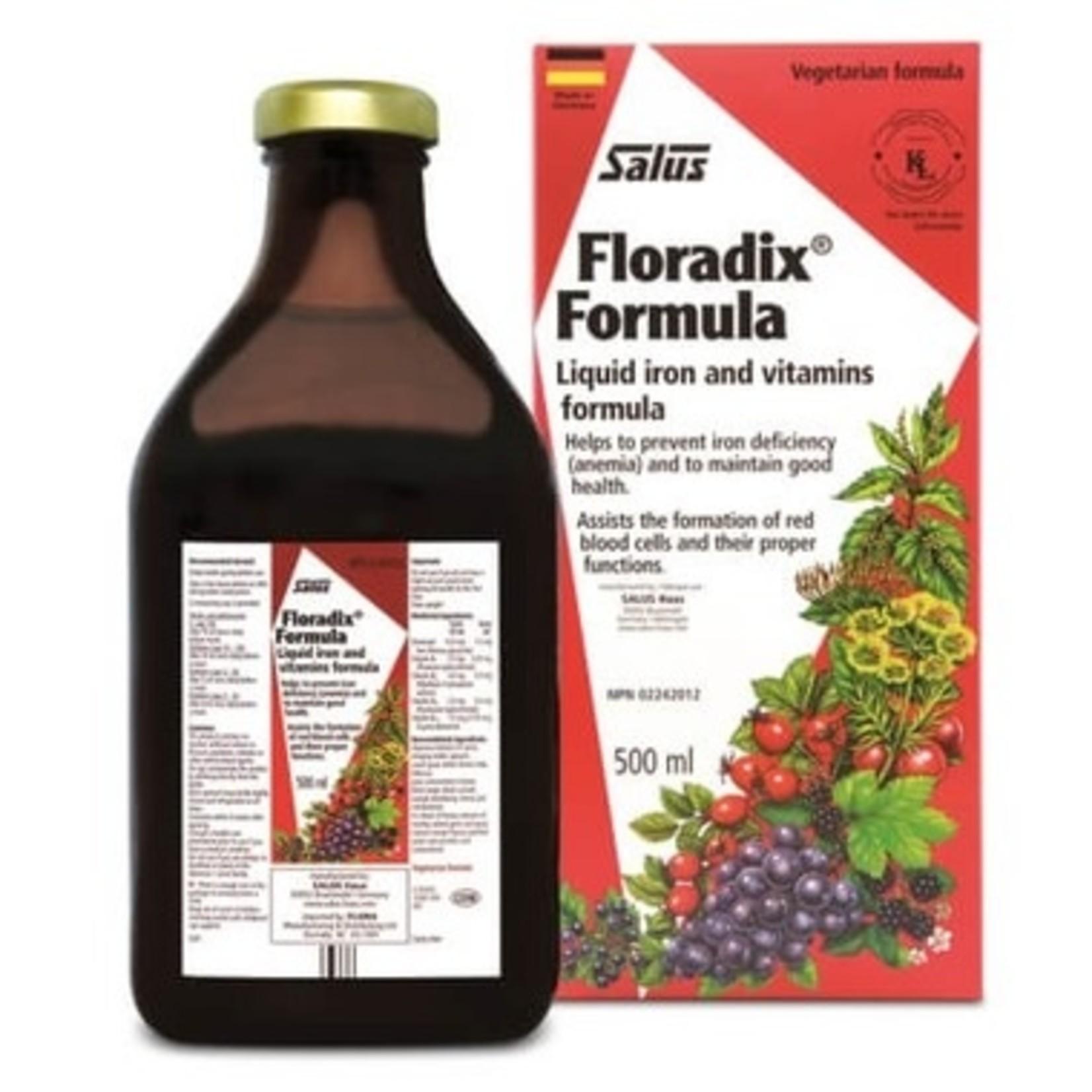 Flora Floradix Iron 500ml