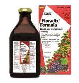 Salus Floradix Iron 500ml