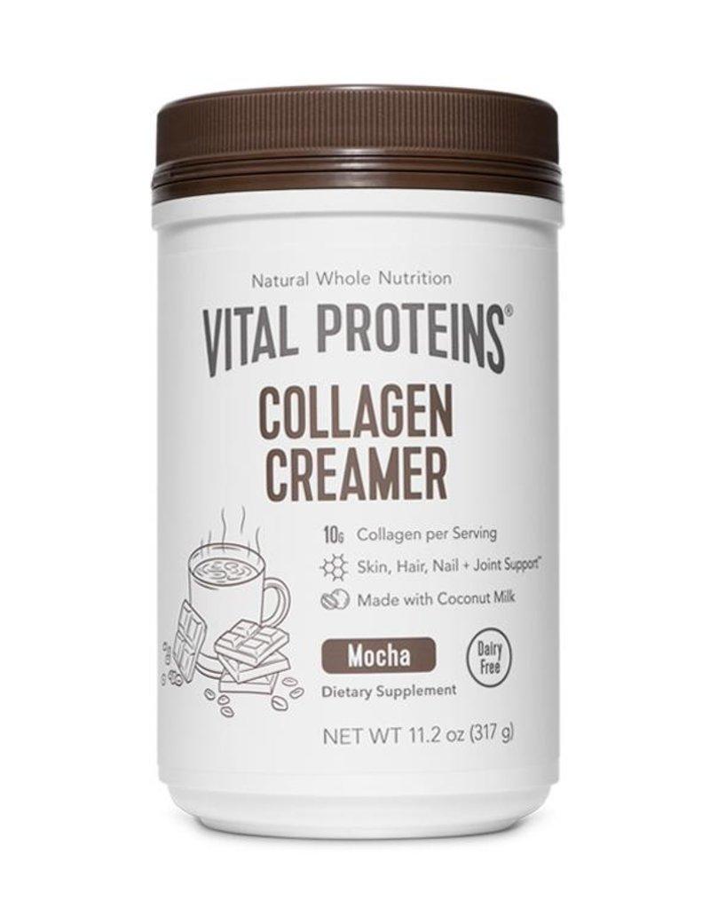 Vital Proteins Collagen Creamer Mocha 317g
