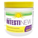 Renew Life intestinew 162g