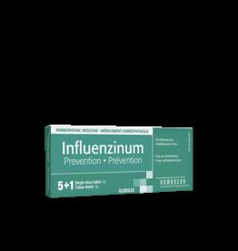 Homeocan Influenzinum Prevention 6 single dose tubes
