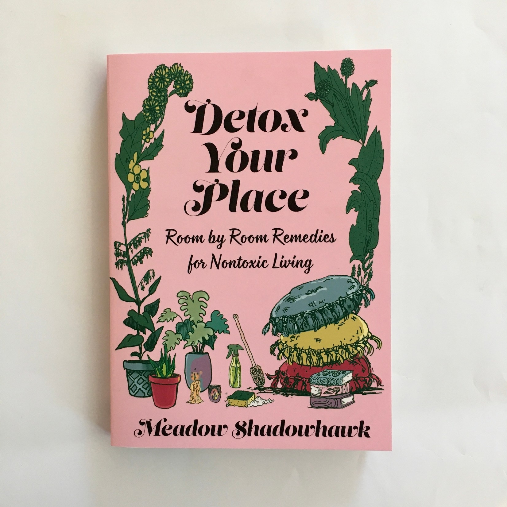 Detox Your Place : Room by Room Remedies for Nontoxic Living