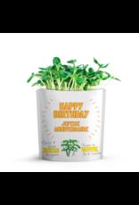 Gift A Green Microgreen Greeting Card Happy Birthday - Sunflower Microgreens