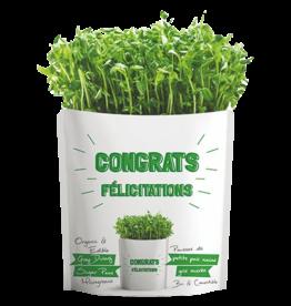 Gift A Green Microgreen Greeting Card Congrats- Grey Dwarf Sugar Peas