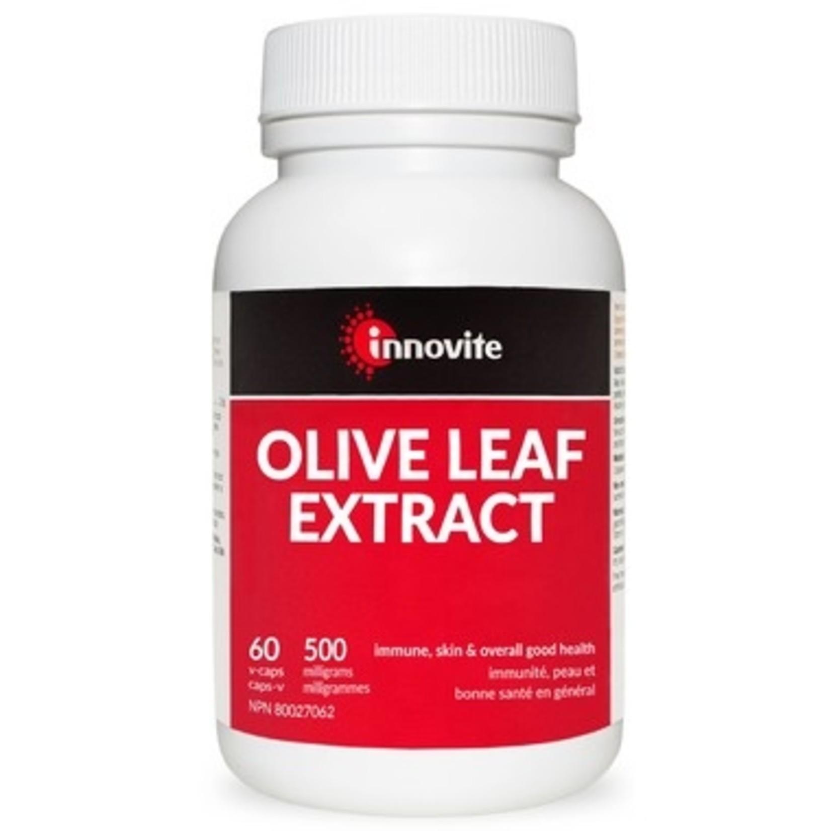 Innovite Olive Leaf Extract 500mg 60caps