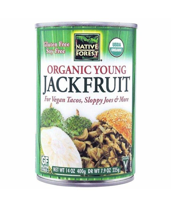 Organic Young Jackfruit 389ml