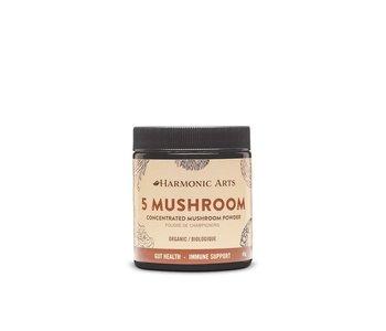5 Mushroom Concentrated Powder 45g