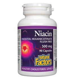 Natural Factors Natural Factors Niacin Flush Free 500 mg 90 caps