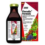 Salus Floradix Iron 250ml