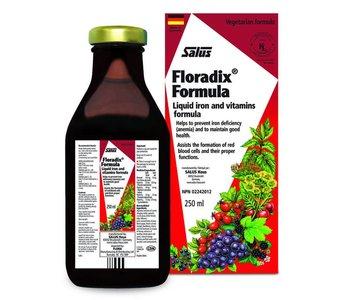 Floradix Iron 250ml