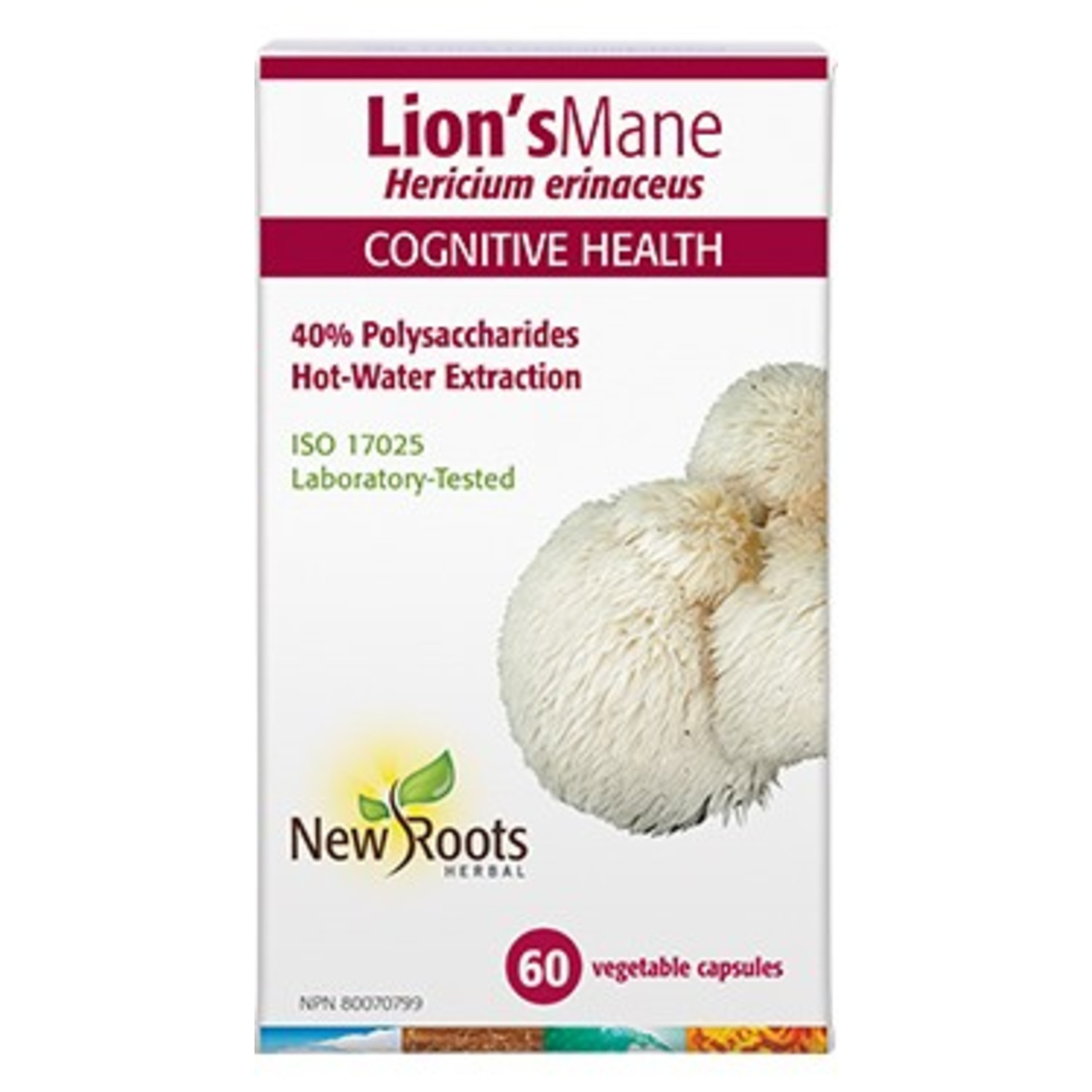 New Roots New Roots Lion's Mane Hot Water Extraction 500mg 60 caps