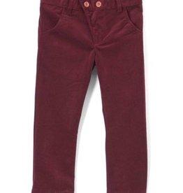 Euro kipp Maroon Velvet Pants