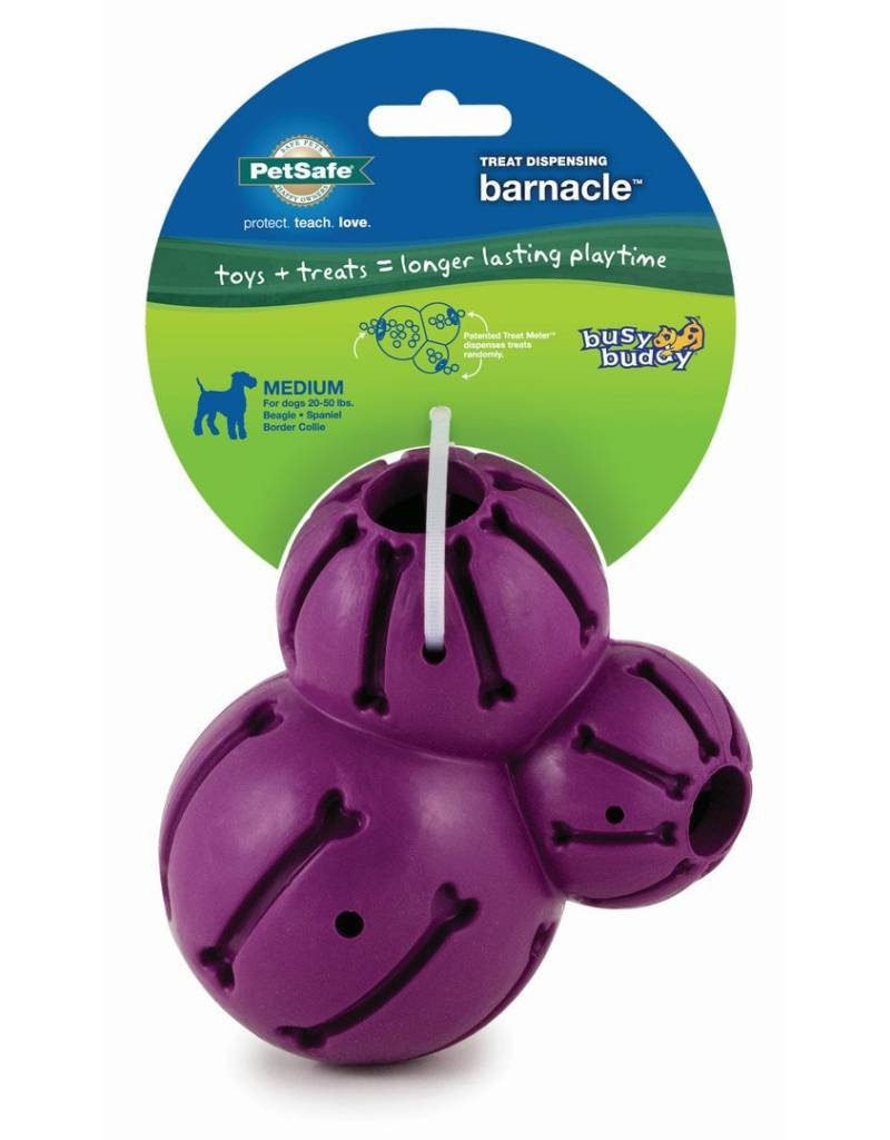 PETSAFE Busy Buddy Barnacle