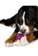 PETSAFE Busy Buddy Bouncy Bone