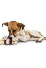 PETSAFE Busy Buddy Bristle Bone