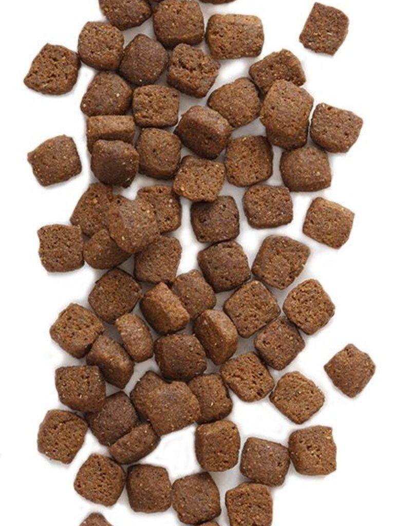 EARTHBORN Earthborn Primitive Natural Dog Food