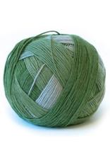 Scoppel-Wolle 2260 Apparition - Zauberball - Schoppel Wolle