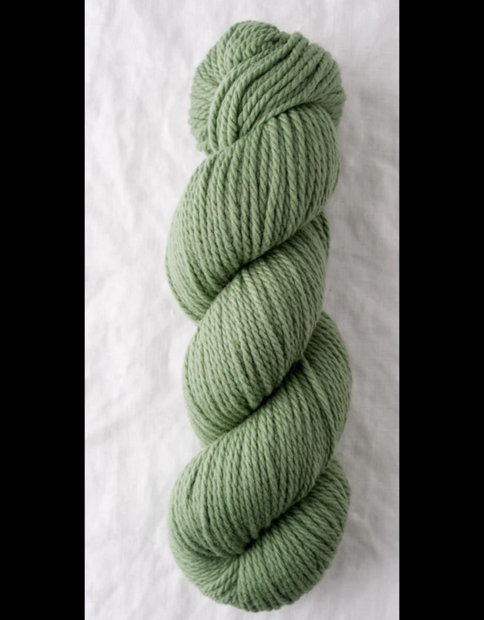 Lichen- Osprey - Quince