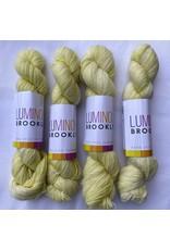 Luminous Brooklyn Squeeze - Brilliant Fine Weight - Luminous Brooklyn