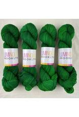 Luminous Brooklyn Quetzal - Radiant Sock - Luminous Brooklyn