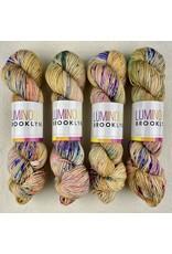 Luminous Brooklyn Brocade - Radiant Sock - Luminous Brooklyn