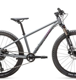 "Cleary Scout 24"" 10 Speed"