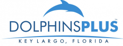 Dolphin Plus Bayside