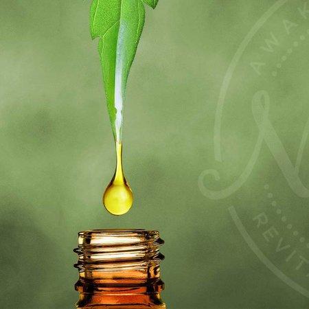 Oil Based Liquids