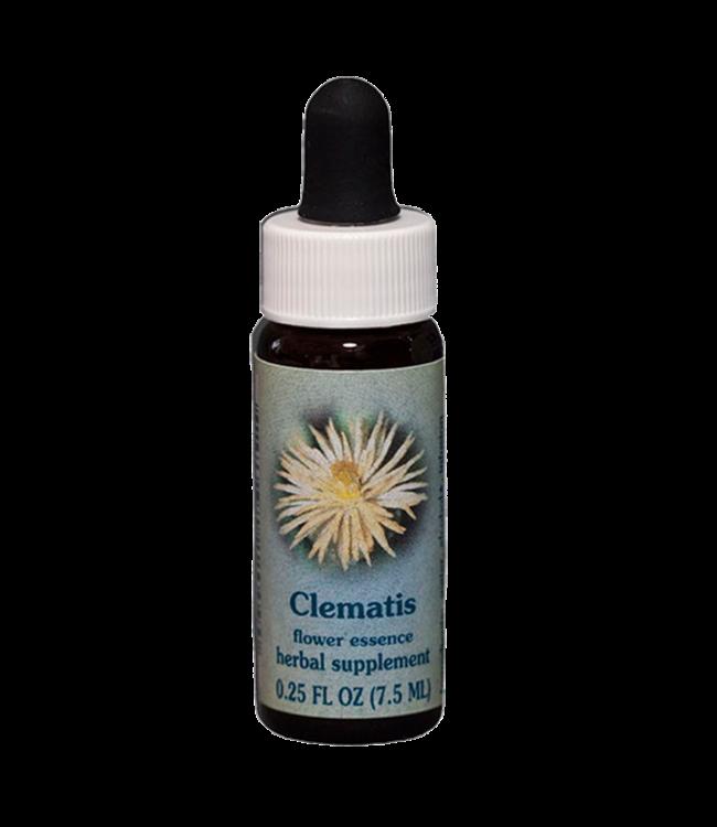 Healingherbs Clematis Flower Essences 7.5ml